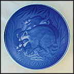 Raccoon And Young Collector Plate by Henry Thelander