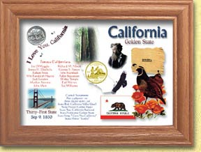 California State Quarter Frame - with Gold Plated State Quarter