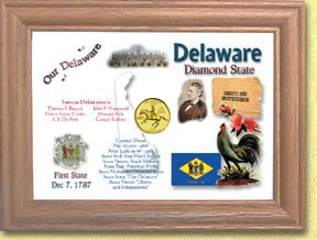 Delaware State Quarter Frame - with Gold Plated State Quarter