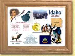 Idaho State Quarter Frame - with Gold Plated State Quarter