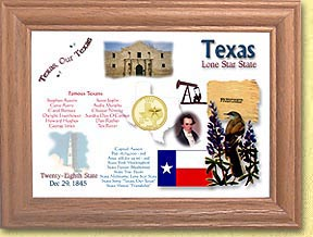 Texas State Quarter Frame - with Gold Plated State Quarter