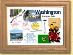 Washington State Quarter Frame - with Gold Plated State Quarter