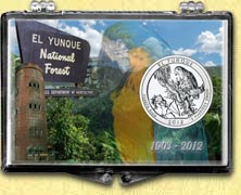 El Yunque National Forest Snaplock Display