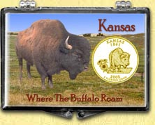 Kansas - Where The Buffalo Roam Snaplock Display - with Gold Plated State Quarter