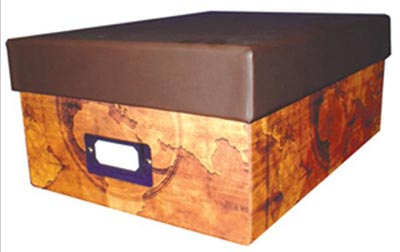 Deluxe Graded Currency Storage Box