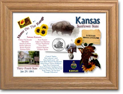 Edgar Marcus & Co Coin Frame - Kansas