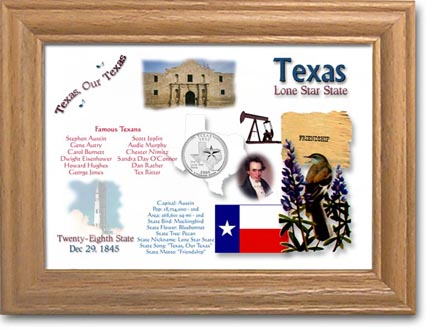 Edgar Marcus & Co Coin Frame - Texas