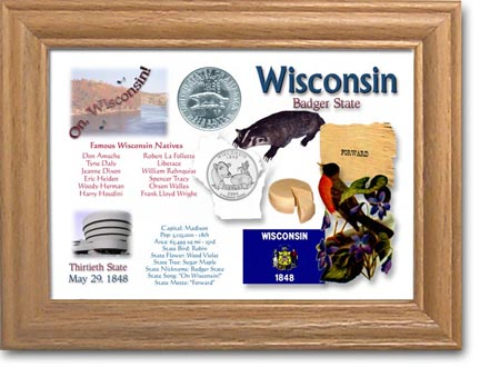 Edgar Marcus & Co Coin Frame - Wisconsin