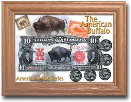 Edgar Marcus & Co Coin Frame - The American Buffalo