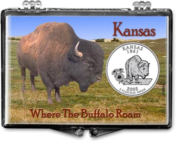 Edgar Marcus Snaplock Display - Kansas, Bison