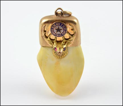 Elks Tooth Pendant in 10K Yellow Gold