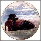 Buffalo Collector Plate by Gregory Perillo