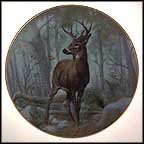 White Tailed Deer Collector Plate by Gregory Perillo MAIN