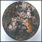 Daily Mews Collector Plate by Jürgen Scholz