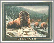 Strength Collector Plate by Rosemary Millette MAIN
