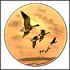 White-Fronted Goose Collector Plate by Rodger McPhail