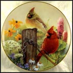 Summer Garden Collector Plate by Bob Travers_MAIN