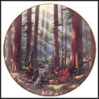 Sunlit Retreat - Sequoia National Park Collector Plate by Rudi Reichardt