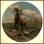 The Bighorn Sheep Collector Plate by Paul Krapf