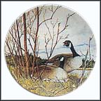 The Nesting Collector Plate by Donald Pentz