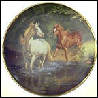 Free As The Wind Collector Plate by Barrie Linklater