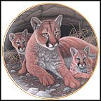 Mountain Lions Collector Plate by Michael Matherly