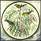 Magnolia Warbler Collector Plate by Arthur Singer