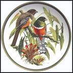 Collared Trogon Collector Plate by Arthur Singer