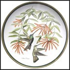 Rivoli's Hummingbird Collector Plate by Arthur Singer