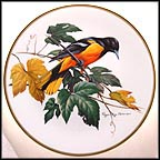 Baltimore Oriole Collector Plate by Roger Tory Peterson MAIN