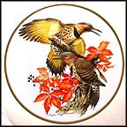 Flickers Collector Plate by Roger Tory Peterson MAIN
