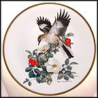Mockingbird Collector Plate by Roger Tory Peterson MAIN