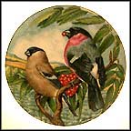 Bullfinch Collector Plate by G. Marks