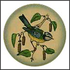 Blue Titmouse Collector Plate