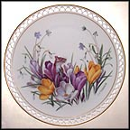 February - Crocus, Hepatica and Snowdrops Collector Plate by Linda Thompson MAIN