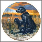 Labrador Retrievers Collector Plate by Robert Christie