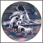 Pointers Collector Plate by Robert Christie