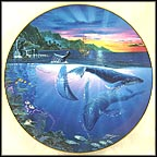 Rhapsody Of Hope Collector Plate by John Enright
