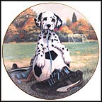 Spotted On The Sideline Collector Plate by Jim Lamb