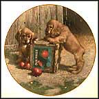 Double Take - Cocker Spaniels Collector Plate by Jim Lamb