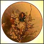 The Blackthorn Fairy Collector Plate by Cicely Mary Barker MAIN
