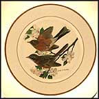 Robin Collector Plate by John Ruthven MAIN