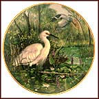 Probing The Marshes - Snowy Egret Collector Plate by Gerda Neubacher
