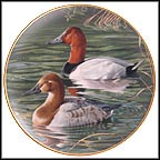 Pair Of Canvasbacks Collector Plate by Trevor Boyer