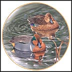 Pair Of Greenwinged Teals Collector Plate by Trevor Boyer