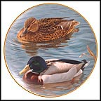 Pair Of Mallards Collector Plate by Trevor Boyer