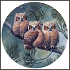 Three Of A Kind: Great Horned Owls Collector Plate by Joe Thornbrugh