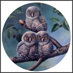 Out On A Limb: Great Gray Owls Collector Plate by Joe Thornbrugh MAIN