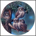Peek-A-Whoo: Screech Owls Collector Plate by Joe Thornbrugh MAIN