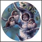 The Tree House: Northern Pygmy Owls Collector Plate by Joe Thornbrugh